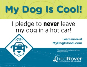 RedRover_MDIC_pledge-card_shareable