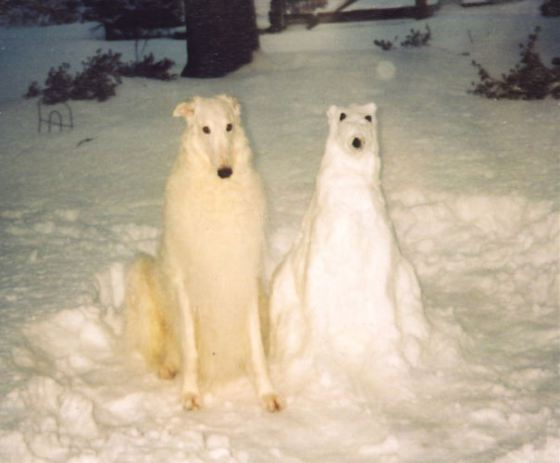 pet-snow-sculptures-1__605