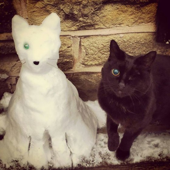 pet-snow-sculptures-8__605